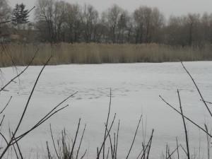 С образованием ледостава рыбалка на мелководье  не замирает