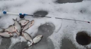 Для кого-то это не понятный, в первый раз услышанный метод ловли, для кого-то этот метод ловли рыбы постоянный.