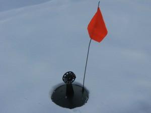 На заснеженном льду использую оранжевый цвет