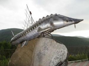 Царь-рыба – это огромный осетр.