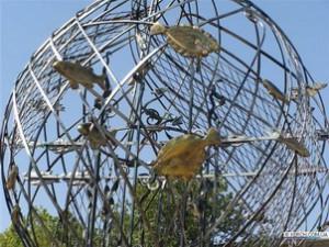 В рыболовецкой сети запутались осетр, катран, хамса и другие рыбы.